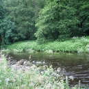 www-blackwatercastle-com-river-walk