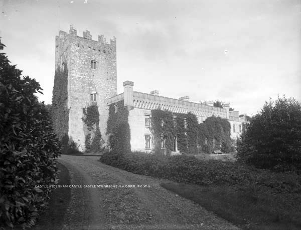 Castle Widenham, Roche Castle French