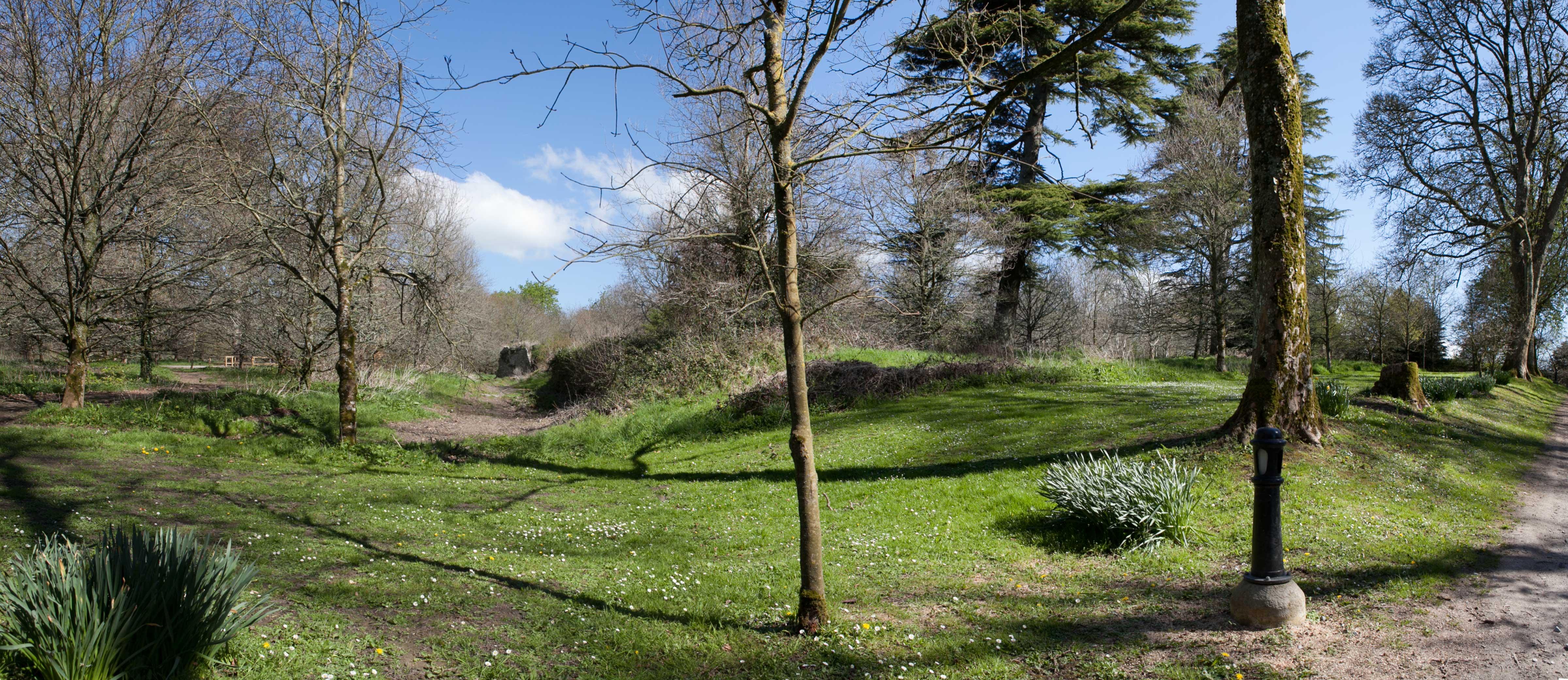 earthen embankment