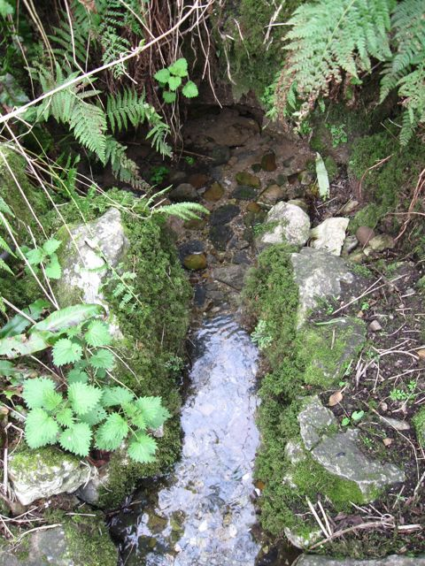 st. PAtrick's Holy Well Blackwater CAstle