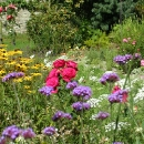 www-blackwatercastle-com-walled-garden-3